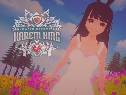 How To Become A Harem King